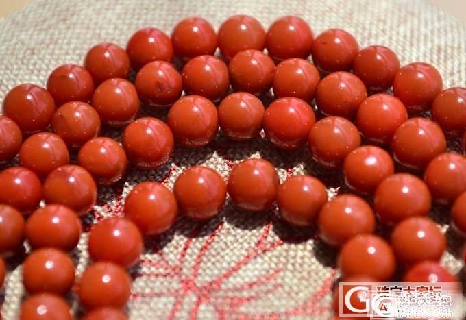 【清晨】九口 柿子红 南红手串