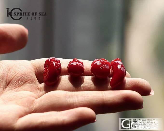 8.25 顶级大枝子/精品南红玛瑙金...